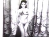 Topless harem girl