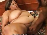 Big fat black lesbos get their slits wet
