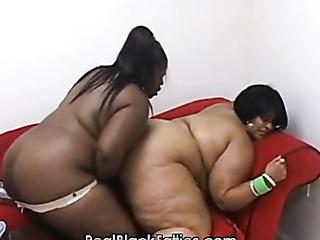 black bbw lesbians play