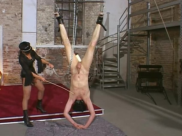 bdsm tranny hanging free galleries porn archive
