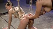 busty ponytailed mistress pantyhose
