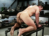 Tattooed bear enjoys getting his butt drilled with a sybian variously