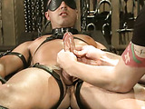 Brunette guy with a big schlong gets it tugged when bound with belts and in a blindfold