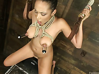 beautiful titty babe loves