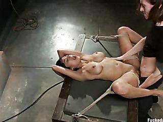 busty brunette latina bondage