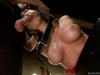 busty brunette bondage needs