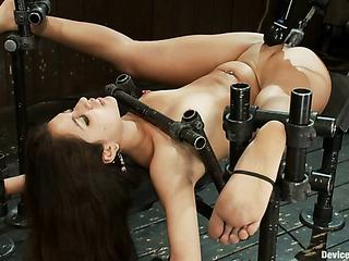 luscious latina bitch bondage