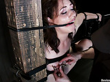 Brunette in bondage is ready for some rough session
