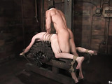 Crazy BDSM installation brings new emotions and sensations