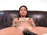 Tied up brunette darling gets tied up and toyed by her partner