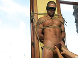 Tied up dude gets his dick stroked and ass toyed hard