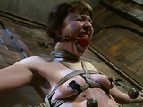 Short haired babe in bondage gets her holes explored with toys