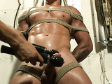Beefy hunk with a large dick gets tied up and ass toyed