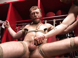 Bearded man in bondage gets his thick dong sucked