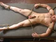 tied gay hunk gets