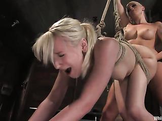 blonde bitch gets tied