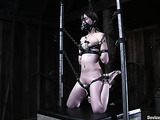 Bound and gagged brunette honey gets her tight pussy toyed