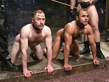 Two muscled dudes getting disciplined by their horny master