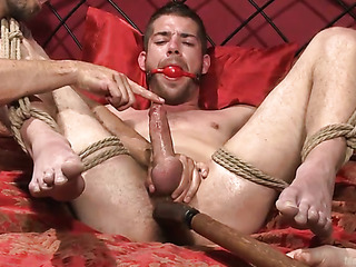tied gay dude gets