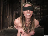 Blindfolded busty blondie gets her shaved pussy stimulated