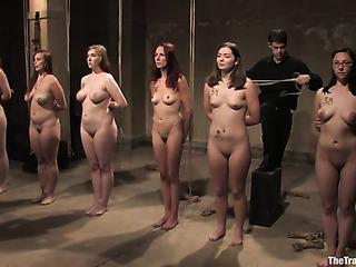 bunch tied slave sluts